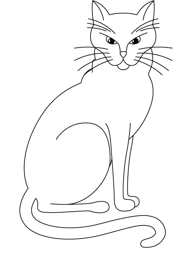 620x843 Realistic Cat Coloring Pages Pin Cat Realistic Cat 4 Realistic
