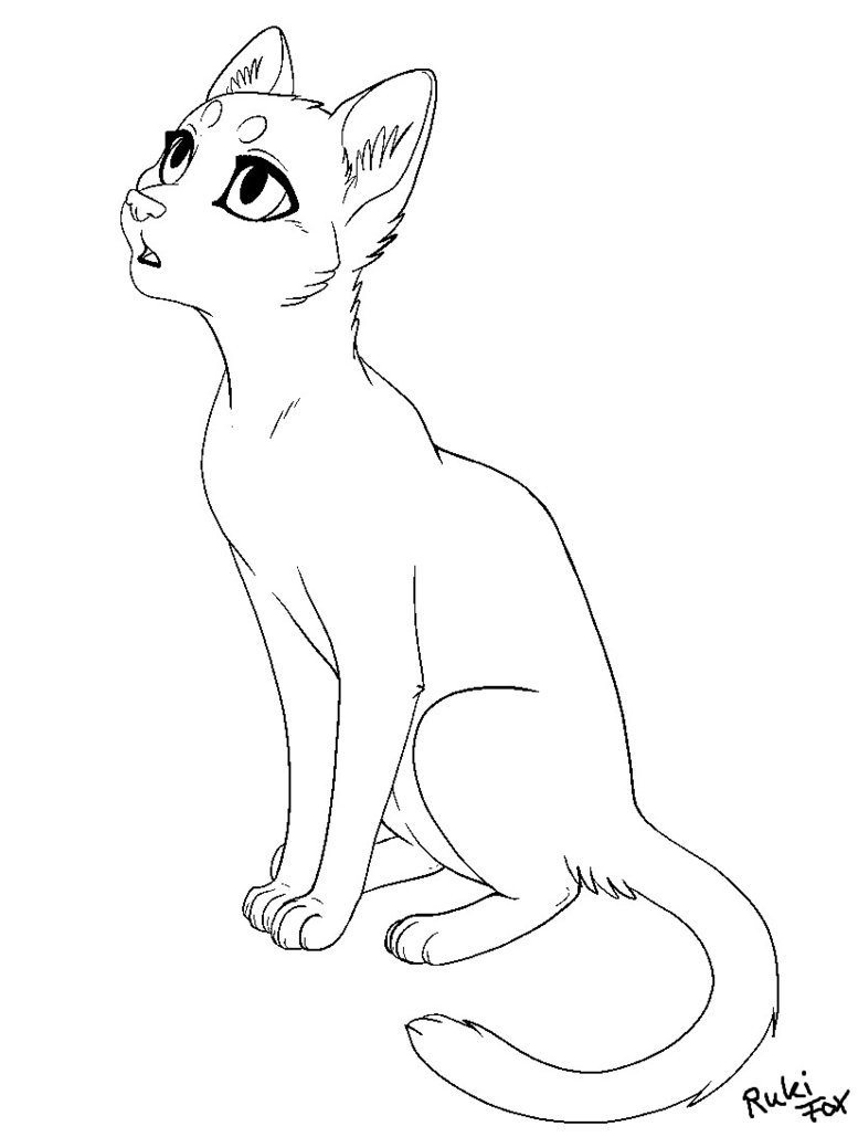 777x1029 Cat Template 02 2014 For Paint By Rukifox