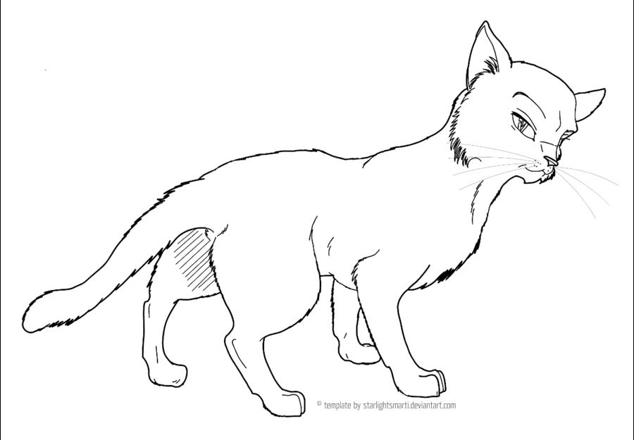 900x625 Cat Character Sheet