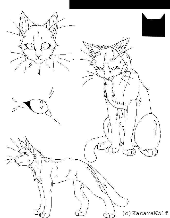 700x900 Warrior Cats Cs Template By Kasarawolf