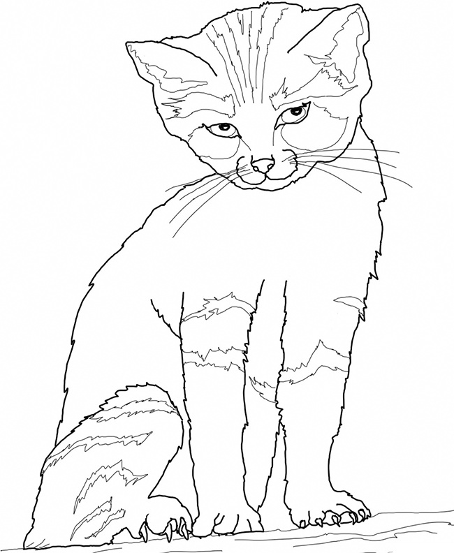 650x792 Cat Shape Template