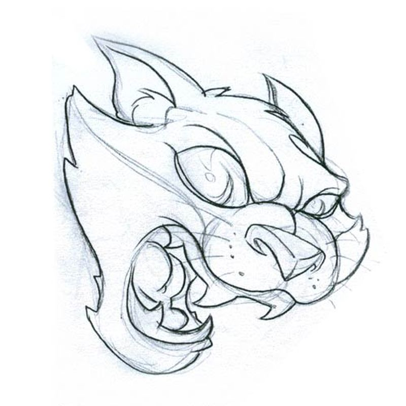 Cat Face Drawing Images at GetDrawings | Free download