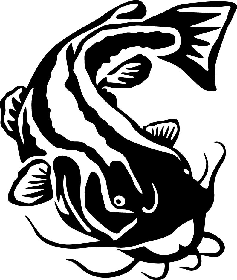 793x937 Flathead Catfish Wall Decal