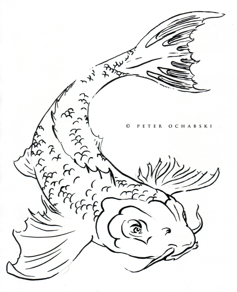 Cat Fish Drawing At Getdrawings Free For Personal Use Cat Fish