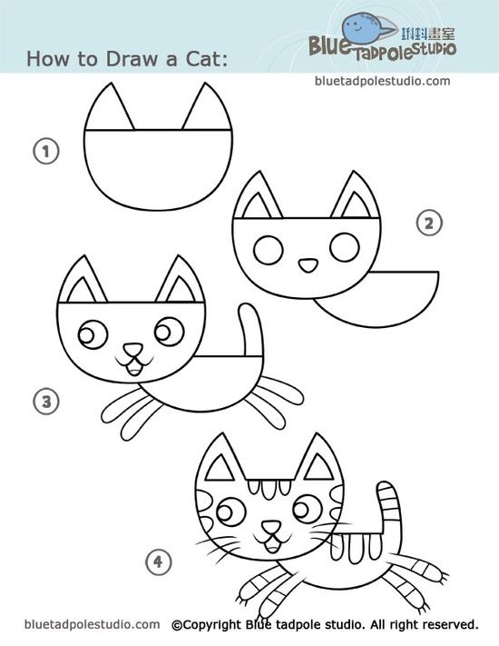 Cat Head Drawing Tutorial At Getdrawings Com Free For Personal Use