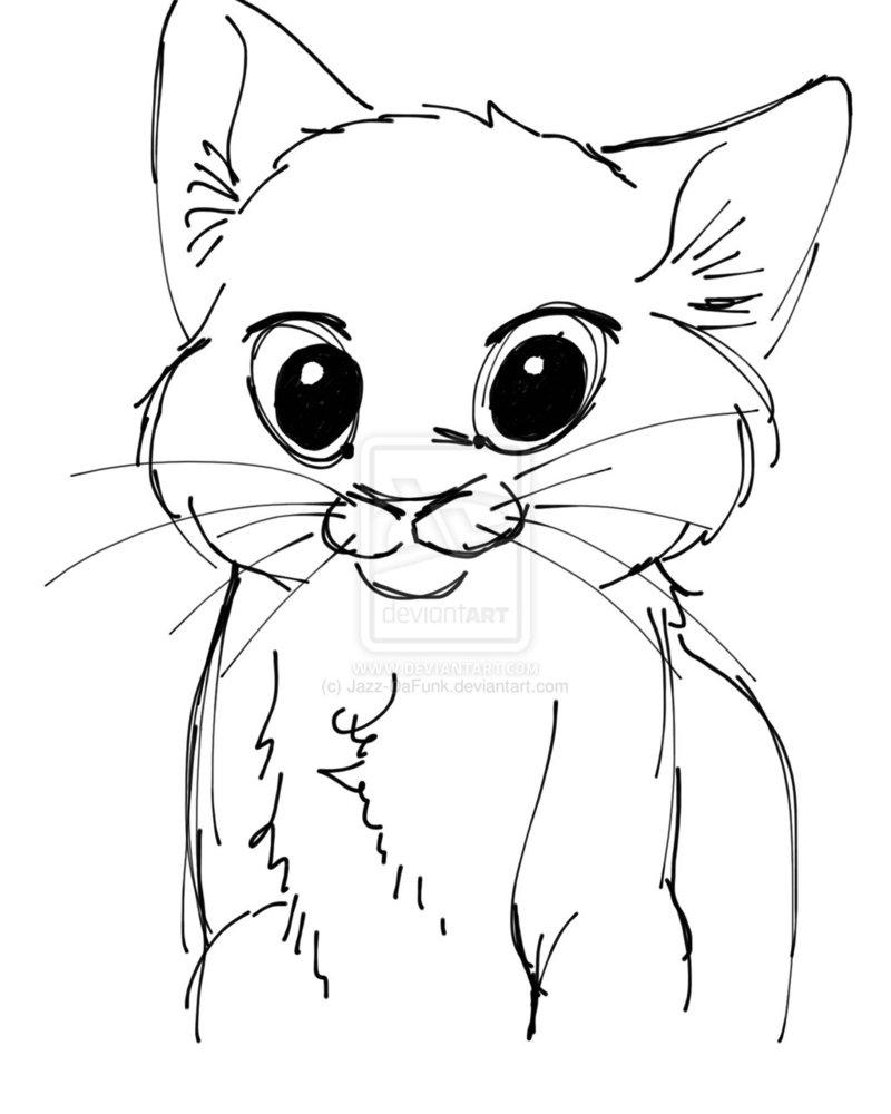 800x1000 Cute Cat Face Drawing