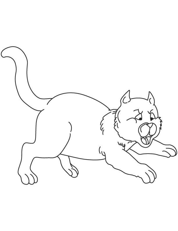 612x792 Jumping Cat Coloring Page Download Free Jumping Cat Coloring
