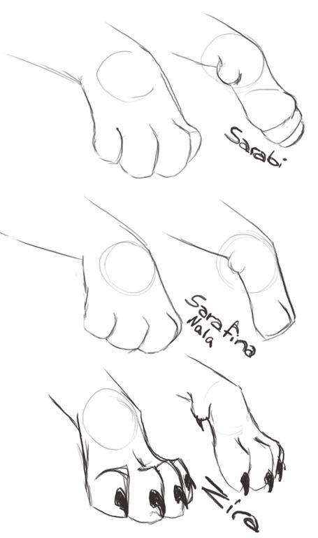 Cat Paw Drawing