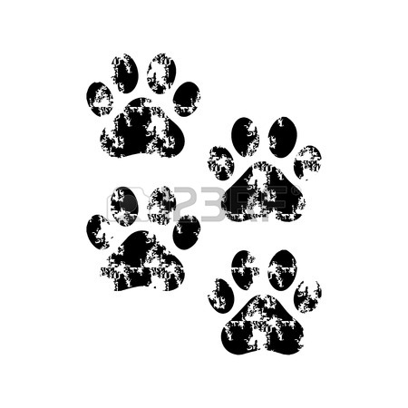 450x450 Paw Prints Stock Photos. Royalty Free Business Images