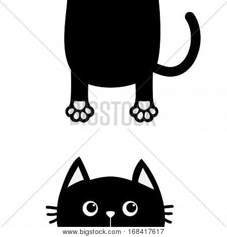 450x470 Black Cat Funny Face Head Vector Amp Photo Bigstock