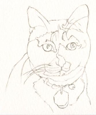 334x400 Cat Artful Passages