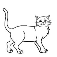 200x200 How To Draw A Cat Practice Traditional Drawing Contest (12838