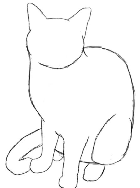 446x599 How To Draw A Cat Cat Drawing, Cat And Drawings