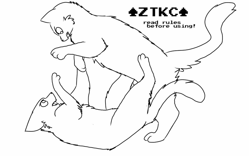 1024x640 Cats Fighting Drawing Cats Fighting Drawing Blood