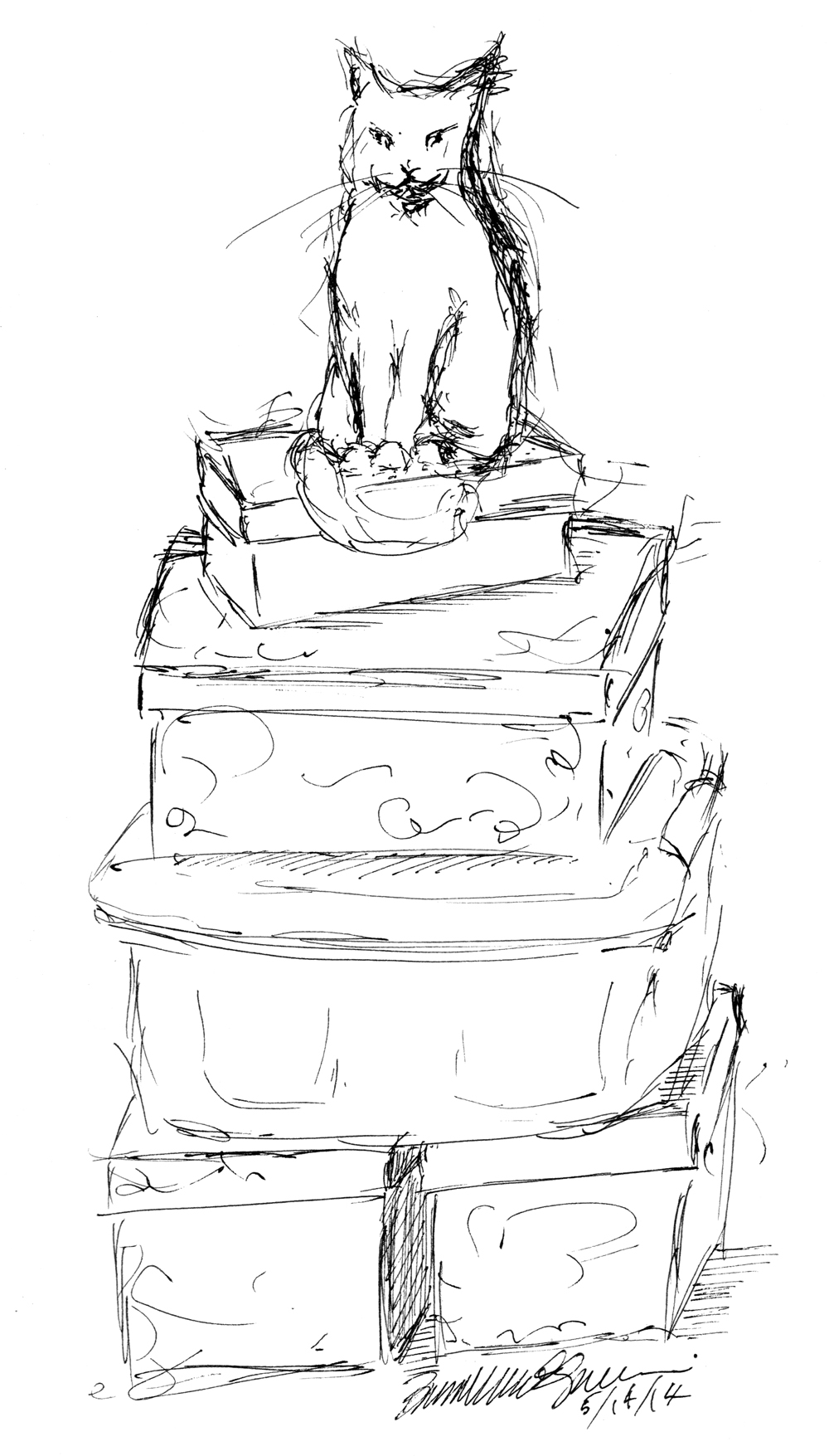 1000x1755 Daily Sketch King Of The Pile Of Boxes ~ The Creative Cat