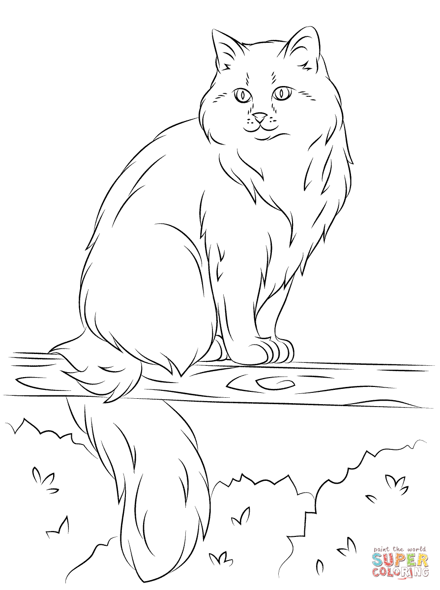 895x1200 Siberian Cat Sits On A Tree Coloring Page Free Printable
