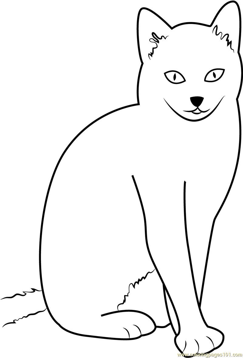 800x1176 Cat Sitting With Style Coloring Page