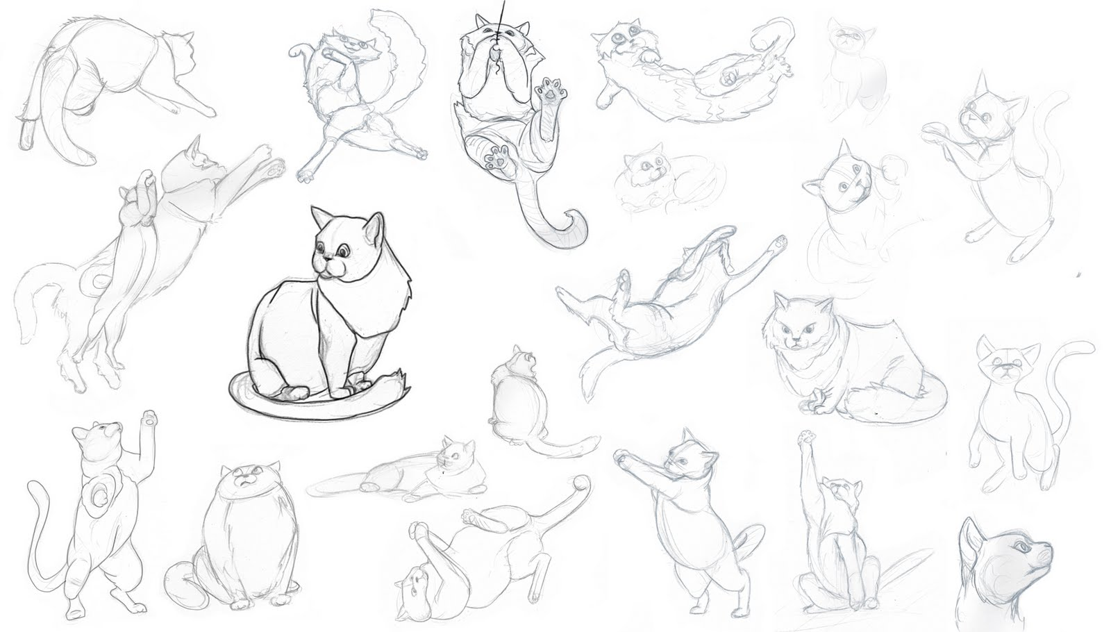 1600x910 Draw A Kitten And Cat Step By Step