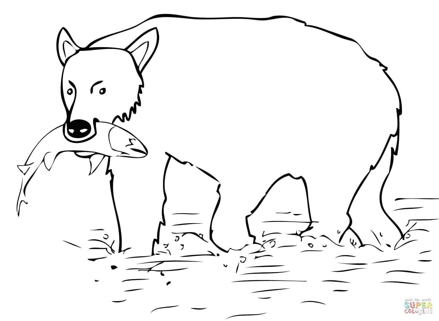 1500x1096 Coloring Oso Coloring Pages Click The Brown Bear Catch Salmon