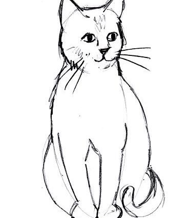 371x425 Easy Cat Drawing Best 25 Easy Cat Drawing Ideas On Easy
