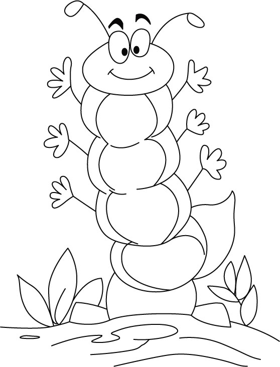 558x732 How To Draw A Caterpillar Step By Step Easy