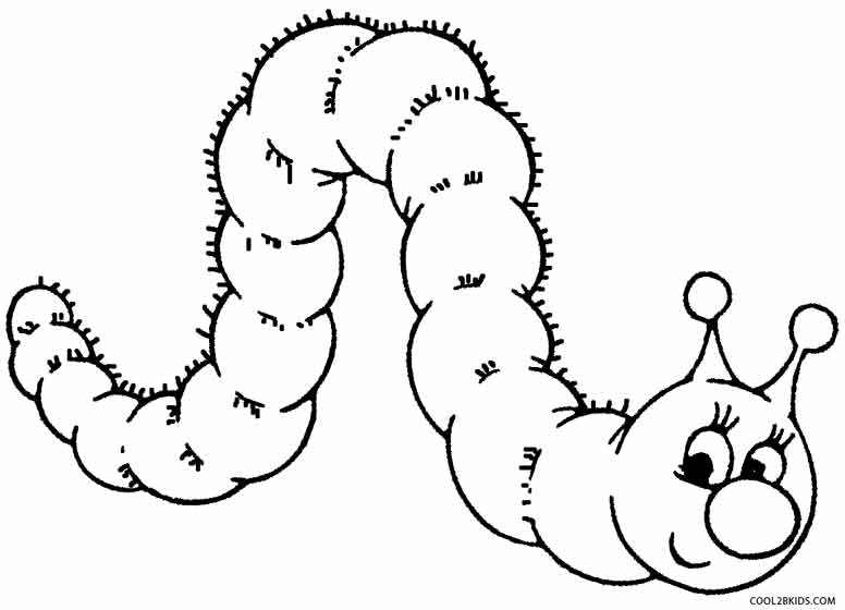 776x560 printable caterpillar coloring pages for kids cool2bkids - Kids Coloring Sheets