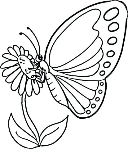 413x480 Ideas Monarch Butterfly Coloring Page And 12 Monarch Butterfly