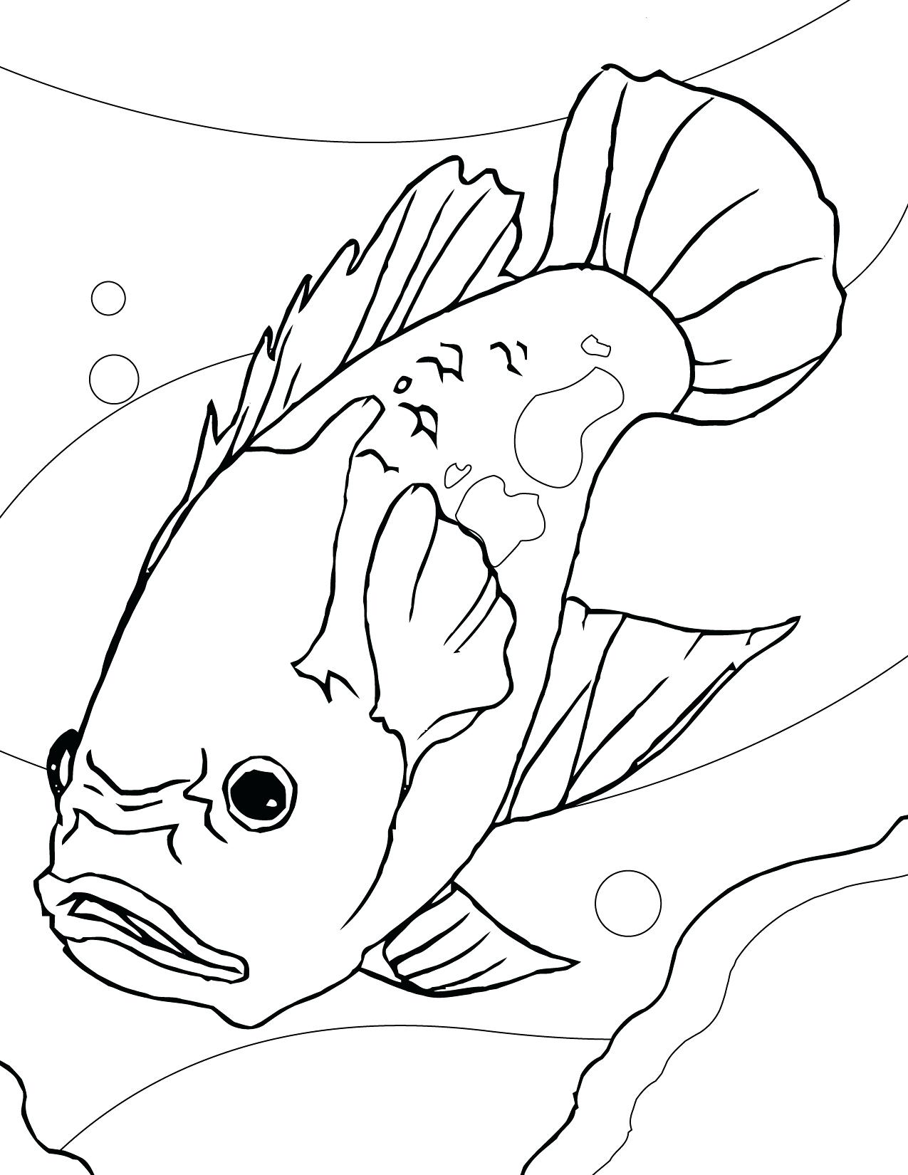 1275x1650 Coloring Catfish Coloring Page Mask Pages Channel. Catfish