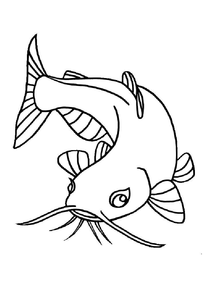750x1000 Catfish Animal Coloring Pages Catfish Clipart Clip Art Images