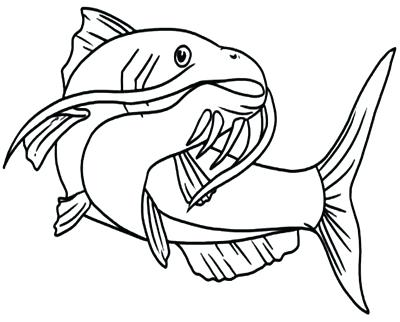 400x322 Catfish Coloring Page Bluegill Coloring Pages Catfish For Kids