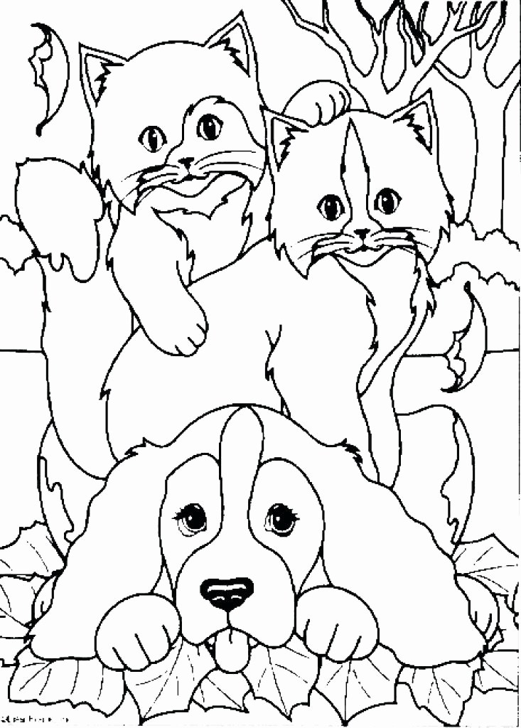 733x1024 Cat And Dog Coloring Pages Image Coloring Page Cat And Dog Kids