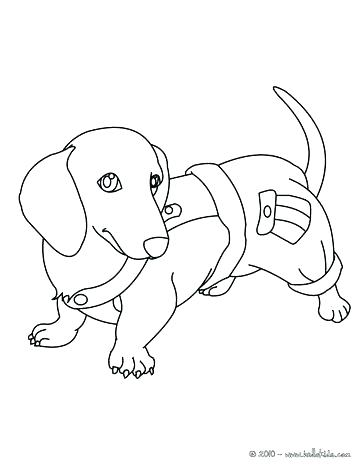 364x470 Dogs And Cats Coloring Pages Color Pages Of Dogs Dachshund Puppy