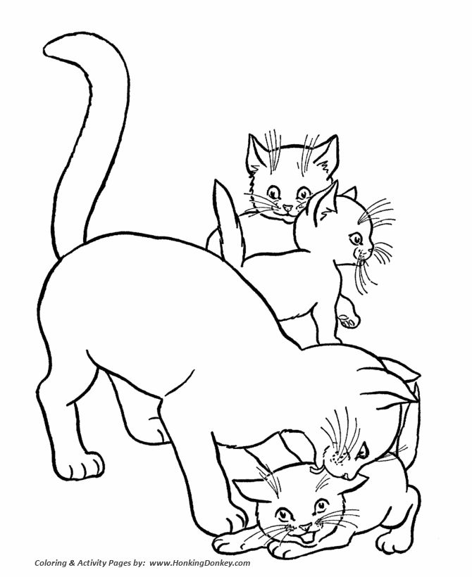 Cats And Kittens Drawing