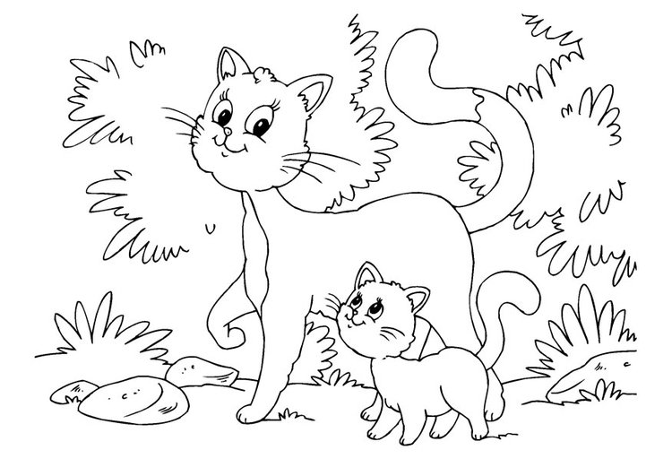 750x531 Coloring Page Cat And Kitten