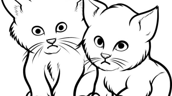 570x320 Drawings Of Cats And Kittens Ba Kittens Coloring Pages Coloring