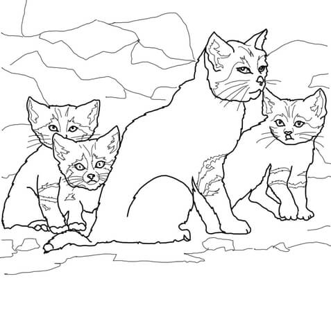 477x480 Sand Cat Kittens With Mother Coloring Page Free Printable