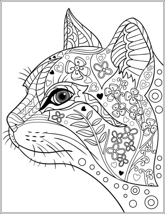 570x738 Adult Coloring Pages Cats Colouring For Tiny Draw Print