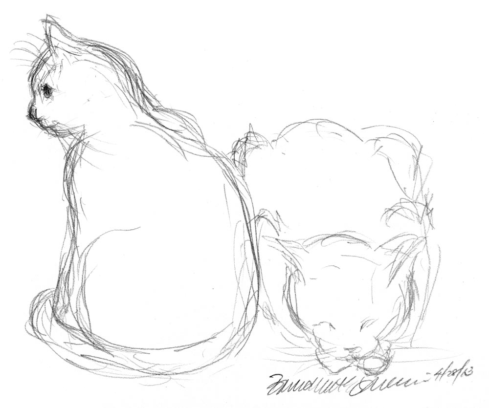 1000x835 Daily Sketch Two Cats ~ The Creative Cat