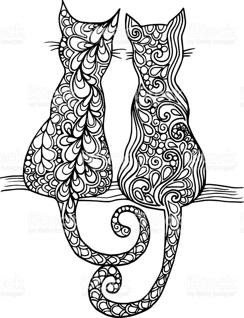 786x1024 Drawn Cat Abstract