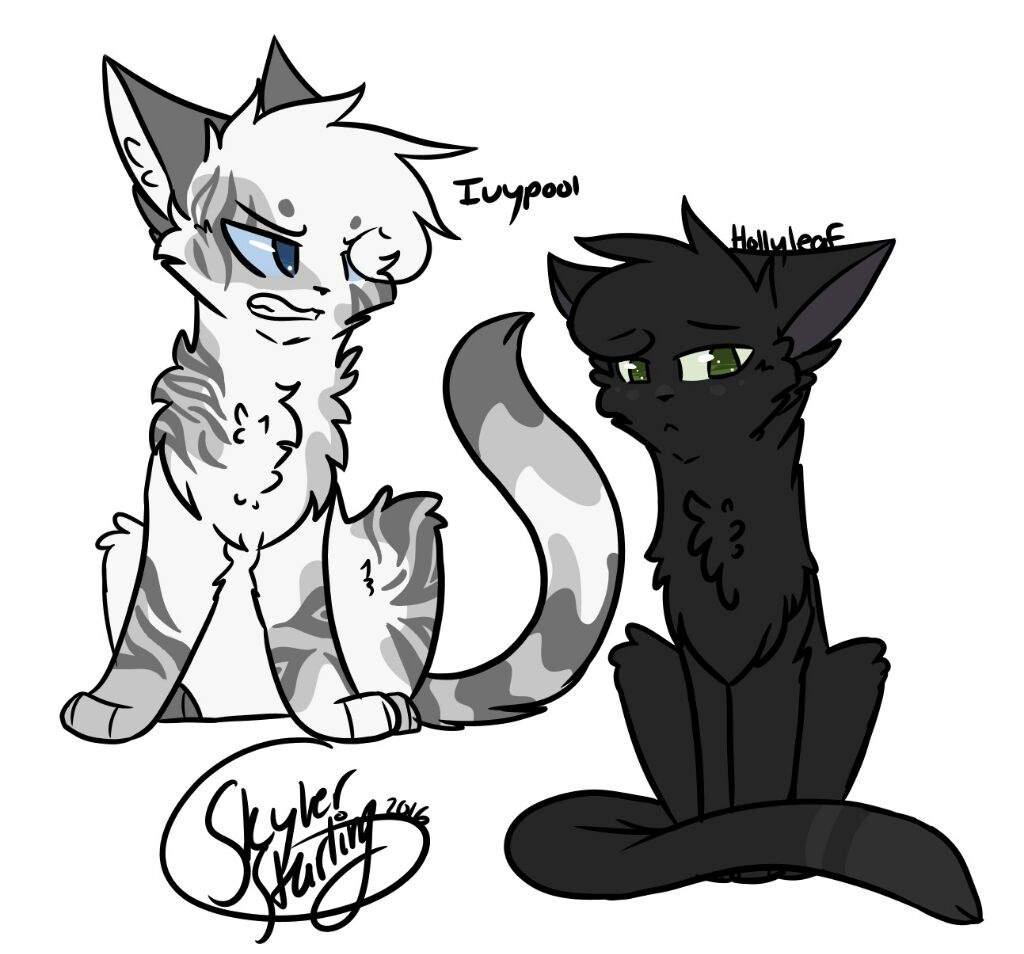 1024x954 Warrior Cats Drawings What Characters Should I Draw Warriors