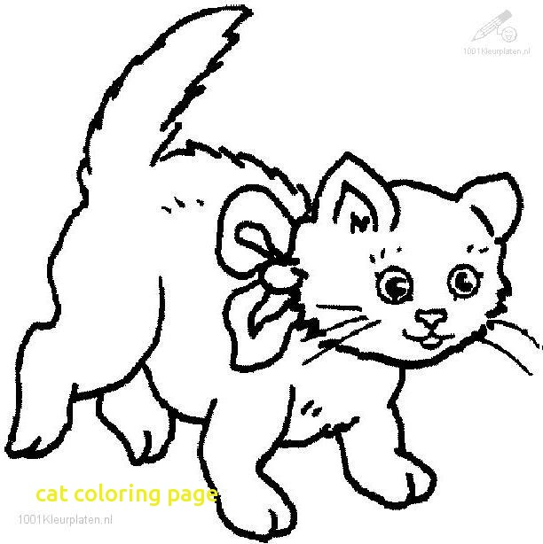 612x614 Cat Coloring Page With How To Draw Cat Coloring Pages Youtube