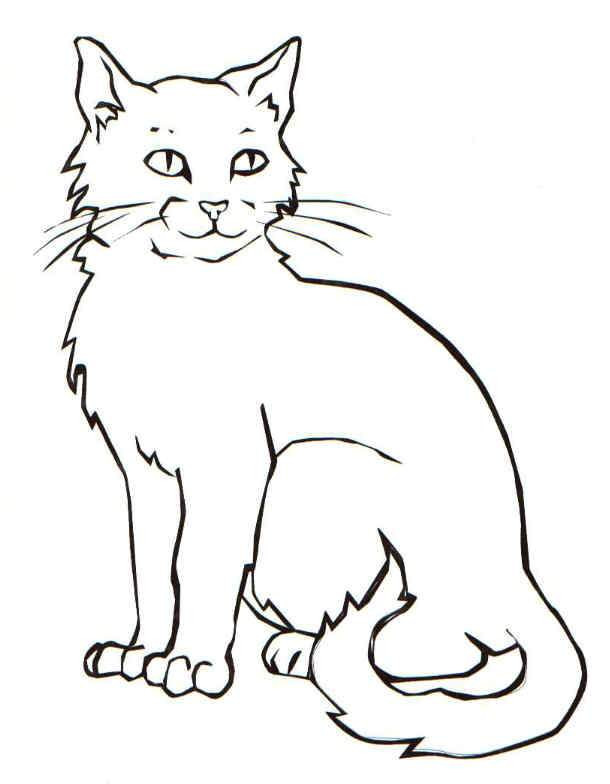 610x784 Crammed Cat Pictures For Kids How To Draw A Sitting Down Step By