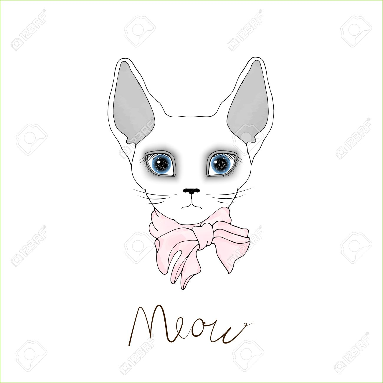 1300x1300 Egyptian Bald Cat With Blue Eyes On A White Background. White