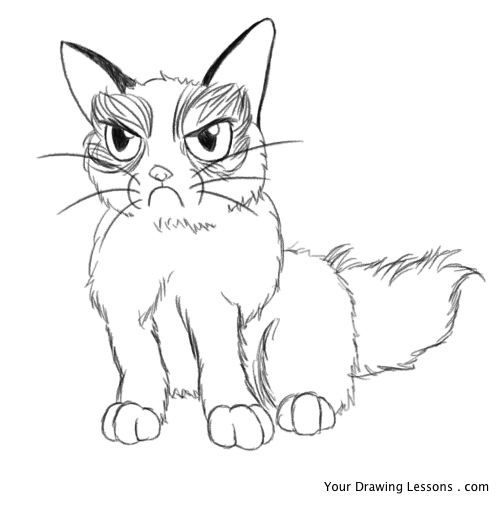 500x506 How To Draw Grumpy Cat Your Drawing Lessons