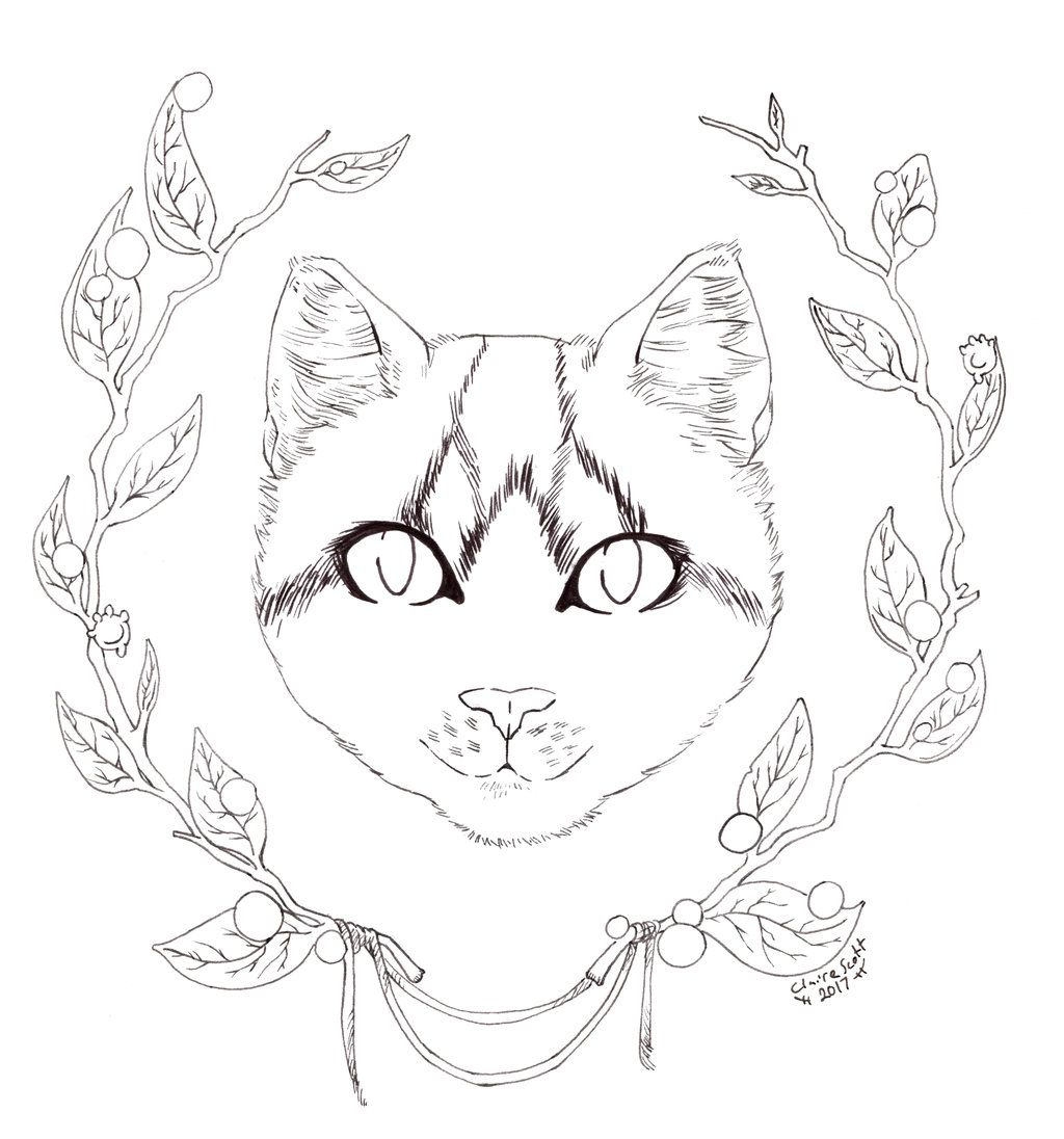 1024x1096 Marvelous Drawing Anime Step By Coloring To Image Of Cat Page