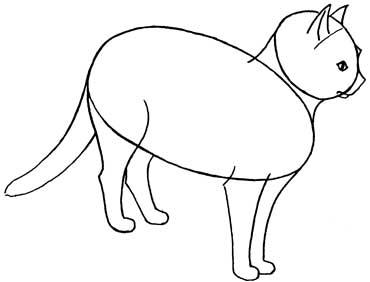 370x282 Cat4.jpg