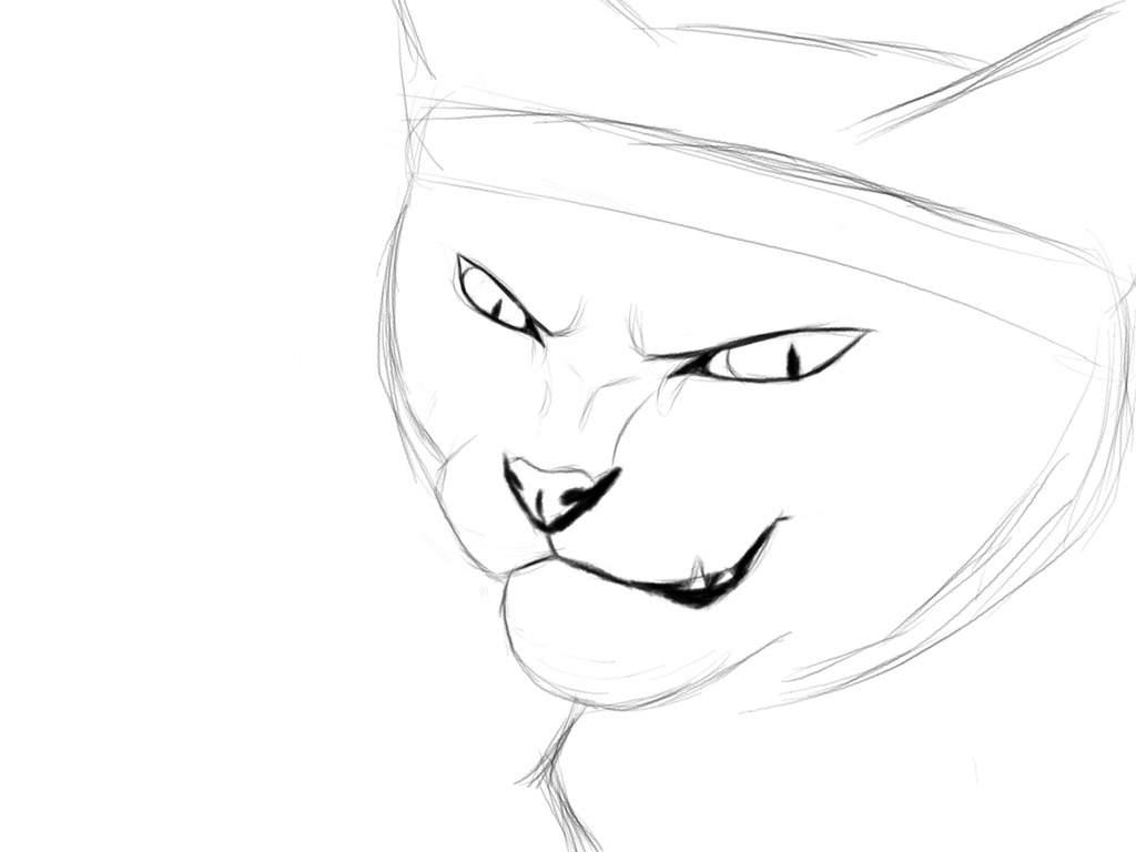 1024x768 Art Tutorial Cat Eyes Warriors Amino
