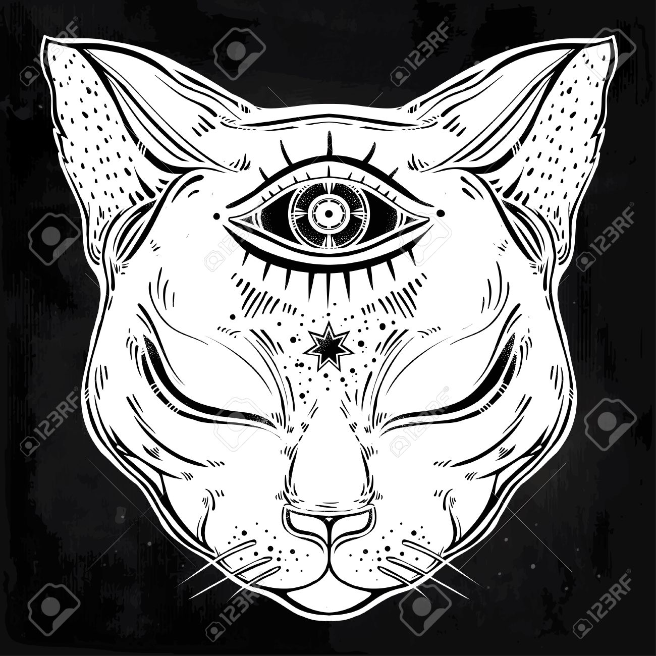 1300x1300 Black Cat Head Portrait With Moon And Three Eyes. Third Eye Is
