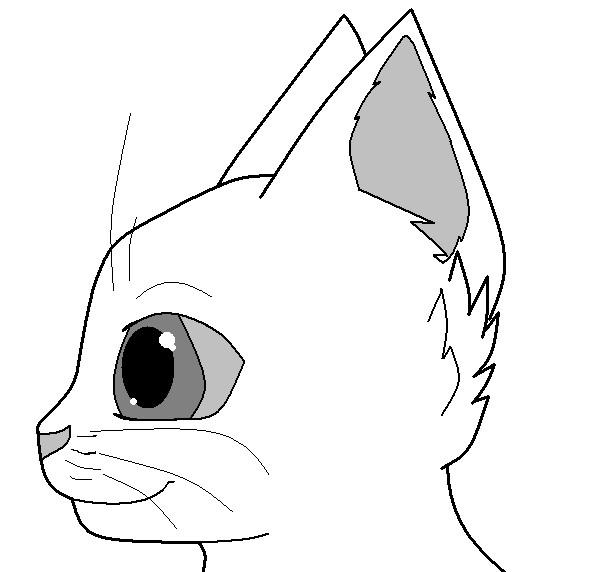 601x572 Cat Face
