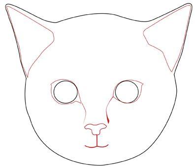 396x341 Photos Cat Faces Drawings,